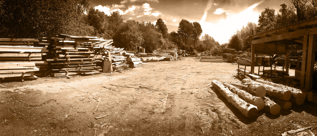 timber yard sepia